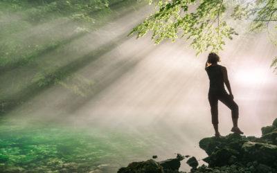 Svjetlost koja nas hrani